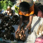 Surat Terbuka Buat Gubernur Papua : Pasar Mama-Mama Papua : Jalan keluar atau Jalan masuk