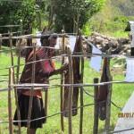 Noken Jati diri dan Identitas Orang Papua